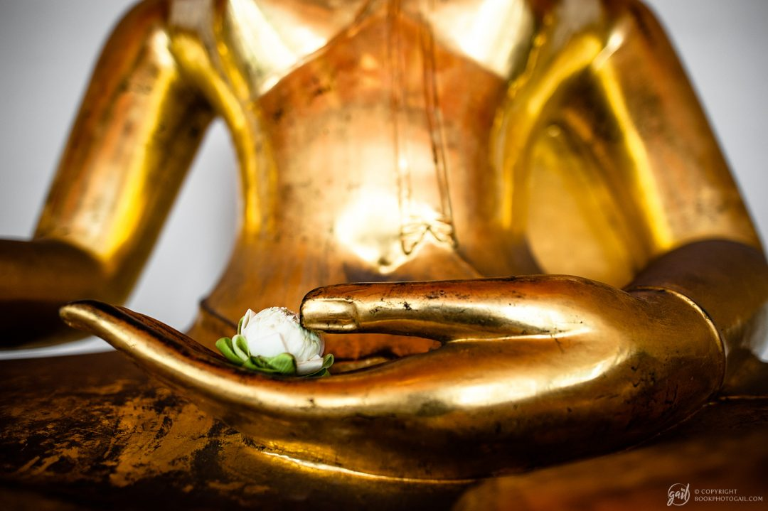 Fleur de Bouddha
