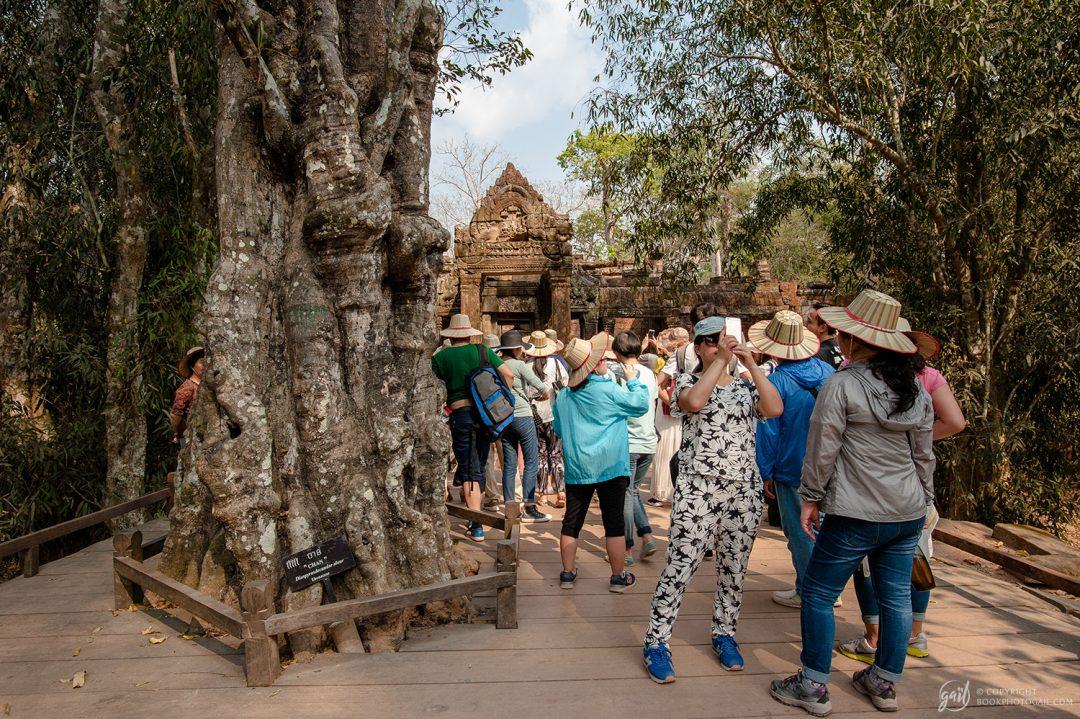 Groupe de touristes chinois au temple de Ta Prohm