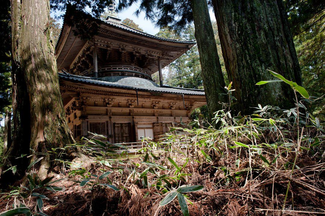 Temple Sai-to, Koya San