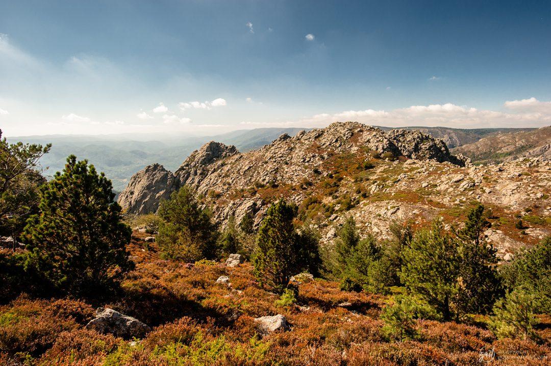 Paysage le long des chemins de randonnée du Caroux