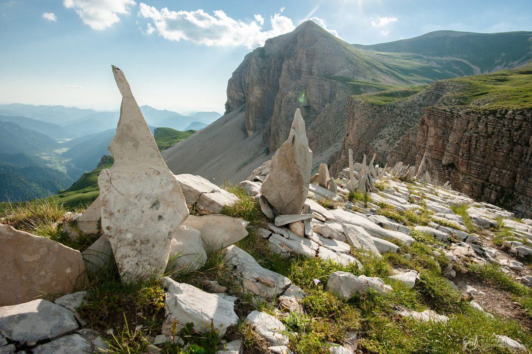 Alignement de pierres entre le Col de Charnier et la Tête des Vautes