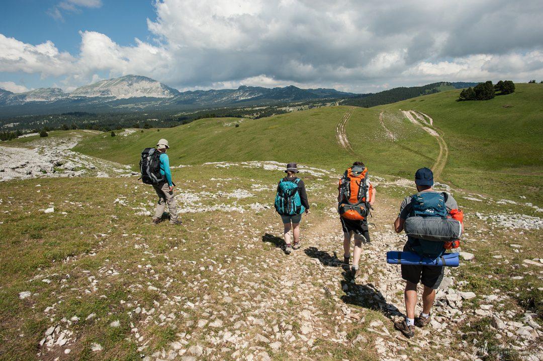 Sur les hauteurs de la Montagne de Beure en direction du Grand Veymont (au fond)