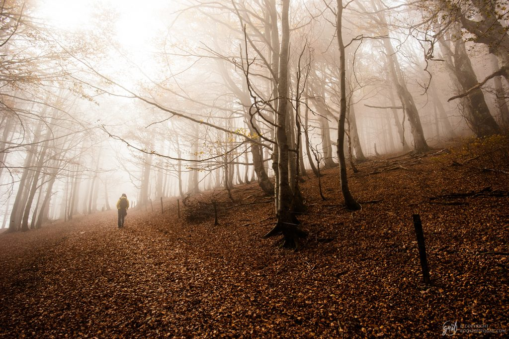 Randonnée d'automne sur le plateau d'Ambel, massif du Vercors