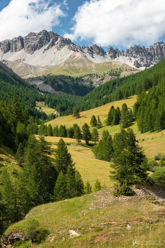 Les alpages aux alentours de Souliers et les contreforts du Pic de Rochebrune