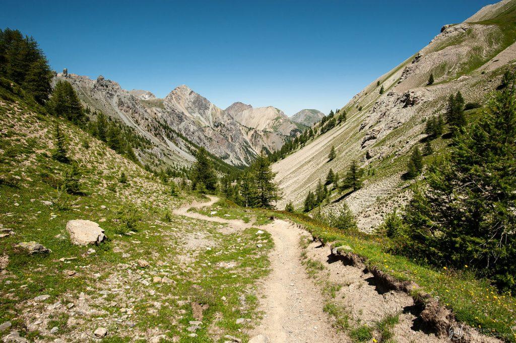 Le sentier de randonnée du Plan du Vallon (variante du GR58) reliant Arvieux au col de Furfande